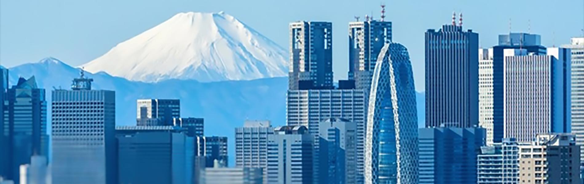 富士山と新宿のビル群